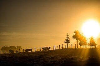 Vroeg opstaan bij zonsopkomst