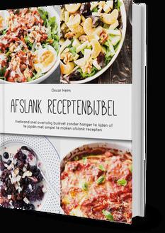 Afslank Receptenbijbel boek