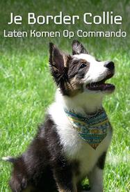 Boek voor honden commando's