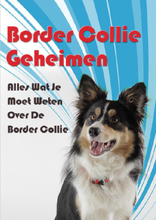 Border Collie Geheimen boek