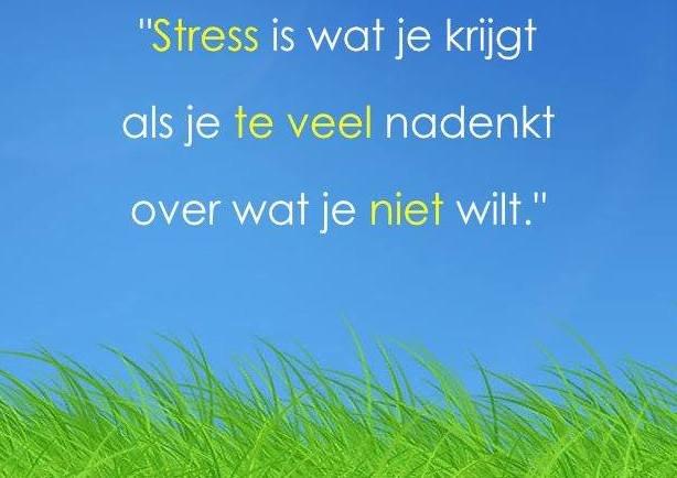 Uitspraak van Frank de Moei over stress