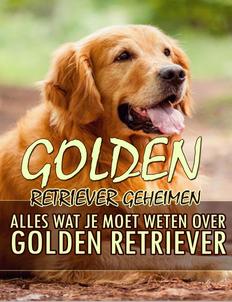 Golden Retriever Geheimen