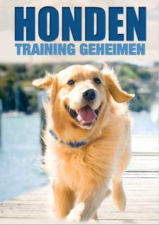 Honden training geheimen Golden Retriever