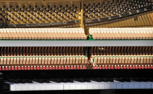 de hamers en snaren van een piano