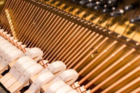 Piano hamers en snaren